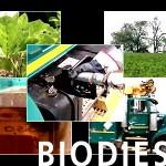 biodiesel Cars