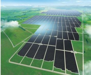 sharp solar panel farm