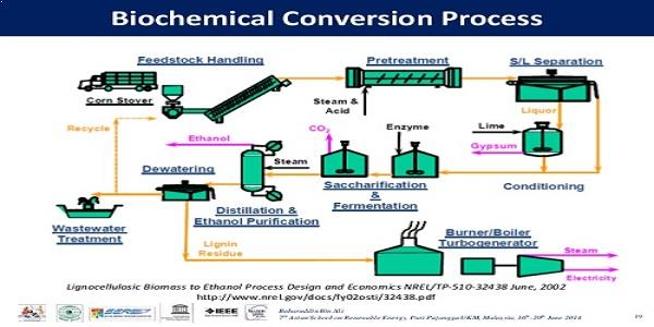 biomass-Biochemical conversion
