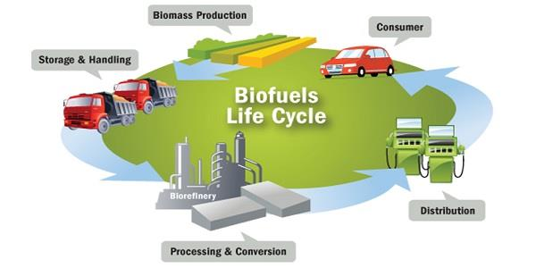 Biofuel powering cars