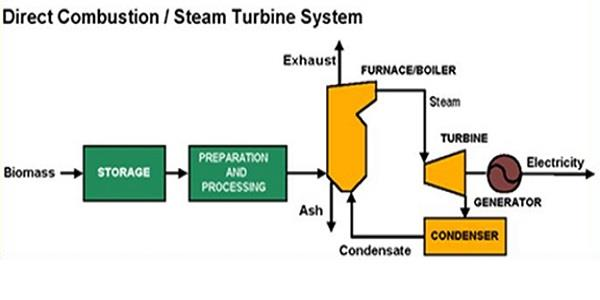 How does biomass work