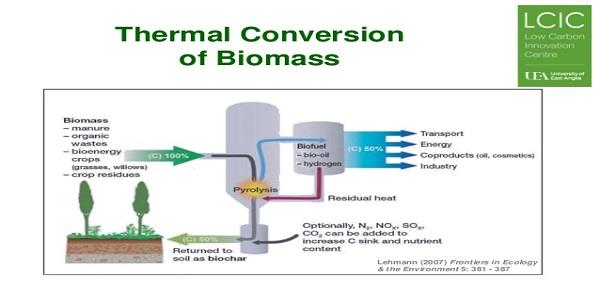 Biomass-Thermal Conversion