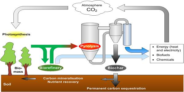 Biomass - ThermoChemical Conversion