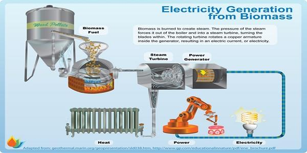 Biomass electricity production