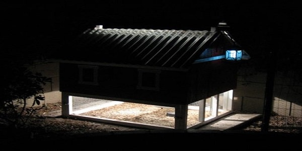 solar lights chicken coop